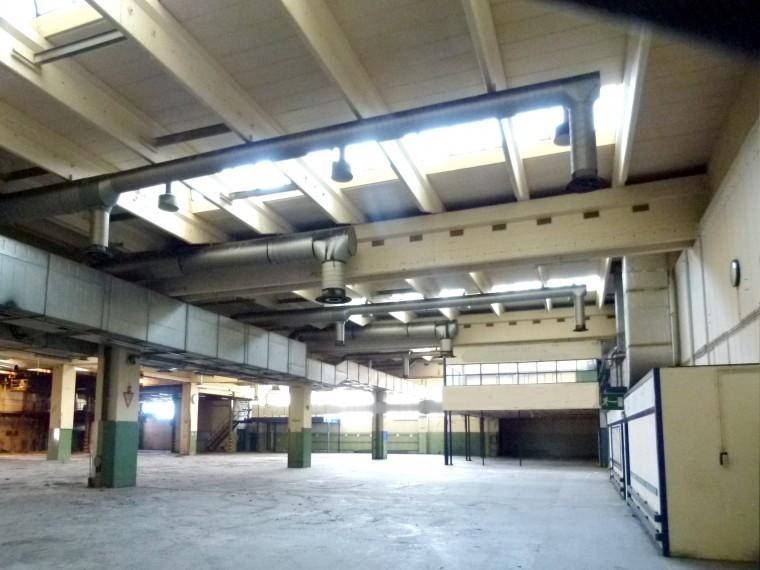 Sensation leie - Commercial objekt fra 800m ² i området Baden / Traiskirchen (Objekt Nr. 050/00208)